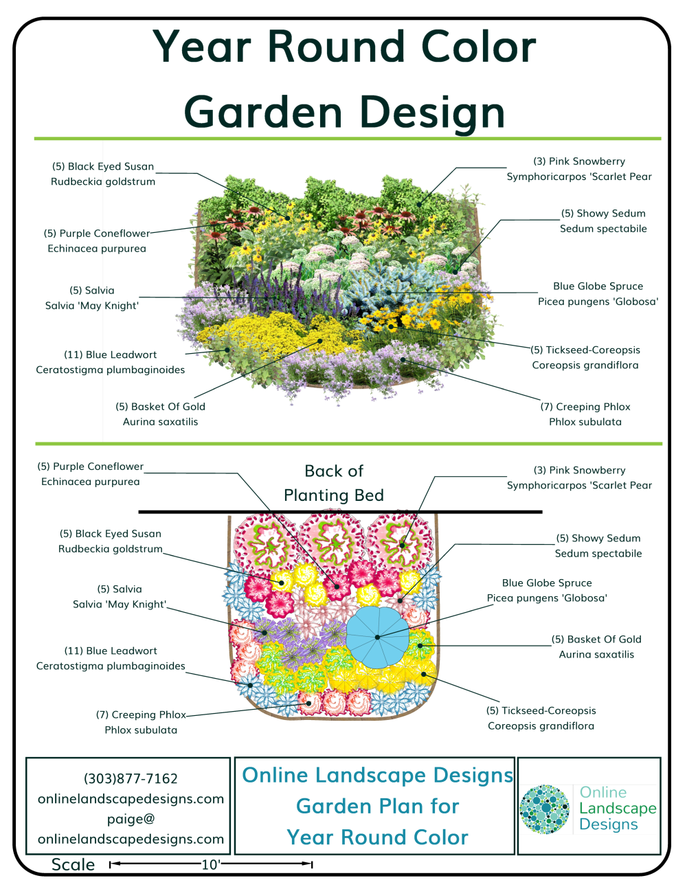 Year Round Color Garden-Garden Plan for Year Round Color